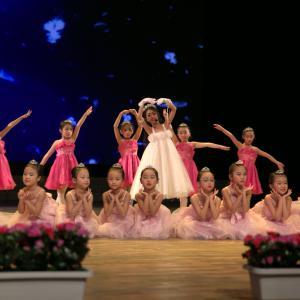 专业舞蹈培训(3-12岁)