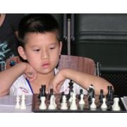 供应深圳小飞象国际象棋秋季班