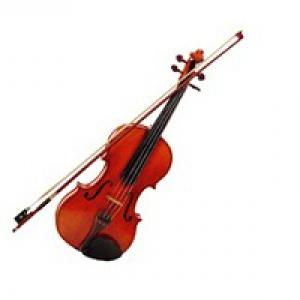 小提琴一学期