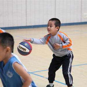 专业幼儿篮球中级班(3-8岁)