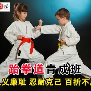 跆拳道青成班 一对多教学 一元购