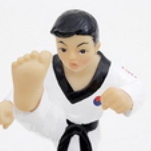 跆拳道课程