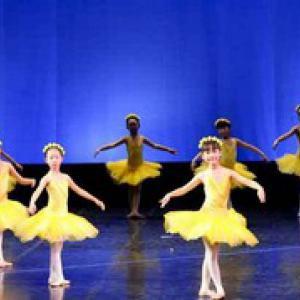 芭蕾形体高级(体验课)