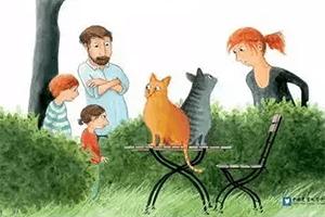 有家的小猫,孩教圈