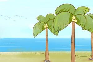 椰子树,孩教圈