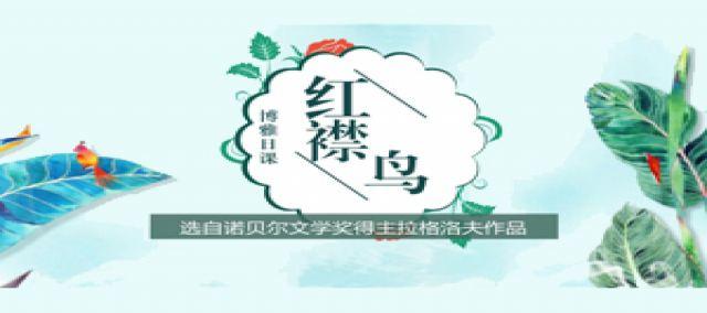 诺奖童书系列:拉格洛夫——红襟鸟