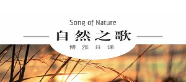 自然之歌系列